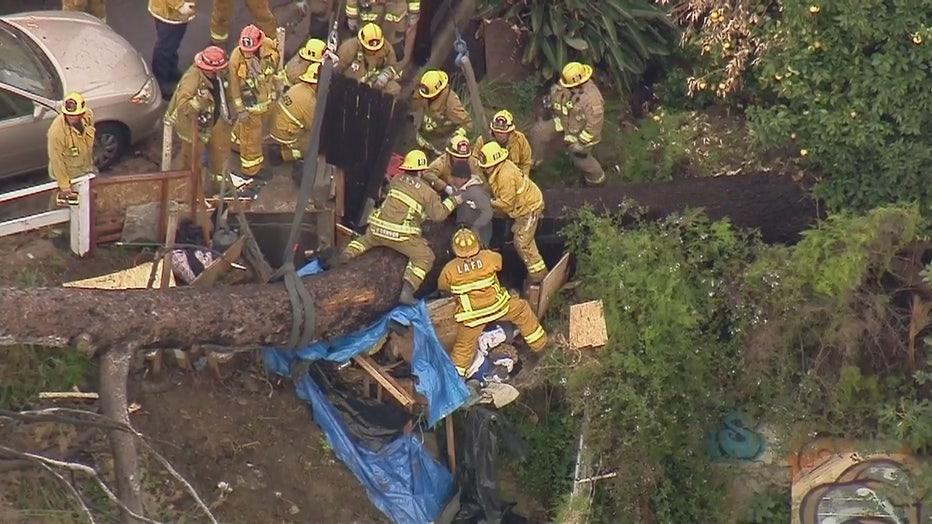 Firefighters-rescue-man-trapped-underneath-fallen-tree-in-Echo-Park.jpg