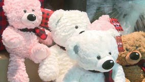 Hundreds of Six Flags bears delivered to Children's Healthcare of Atlanta