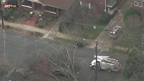 Tree falls, crushes truck in northeast Atlanta