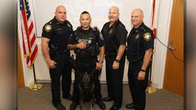 K9 Dobies celebrates retirement from Tarpon Springs Police Department