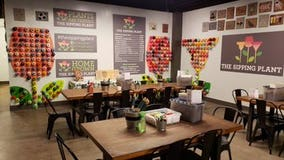Soil, string and wine create crafty New Year at Sandy Springs studio