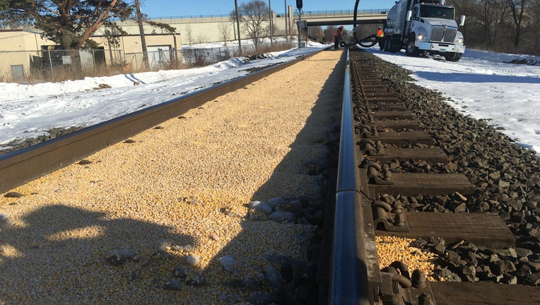 Corn mysteriously fills railroad tracks in Crystal, Minnesota as far as the eye can see.