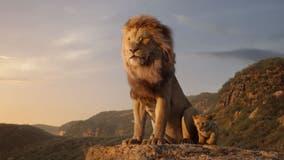 Disney bills Berkeley school $250 for showing Lion King without proper permit