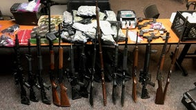 Police find guns, drugs in search of Gainesville home