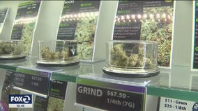 Run on marijuana dispensaries as Bay Area shelters-in-place