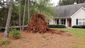 Caught on camera: Strong storm uproots tree in Newnan front yard