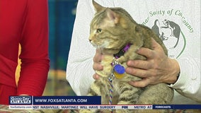Pet of the Day: March 2, 2020