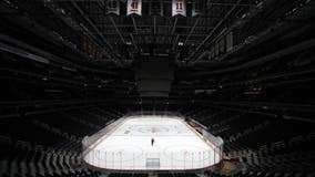 NHL adopts 24-team playoff format if it can resume season
