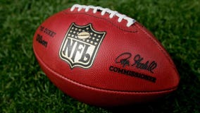 NFL team owners vote to expand playoffs by two teams