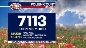 Atlanta suffering from 'extremely high' pollen count