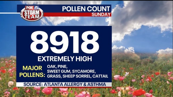 Atlanta pollen count 2nd highest in recorded history