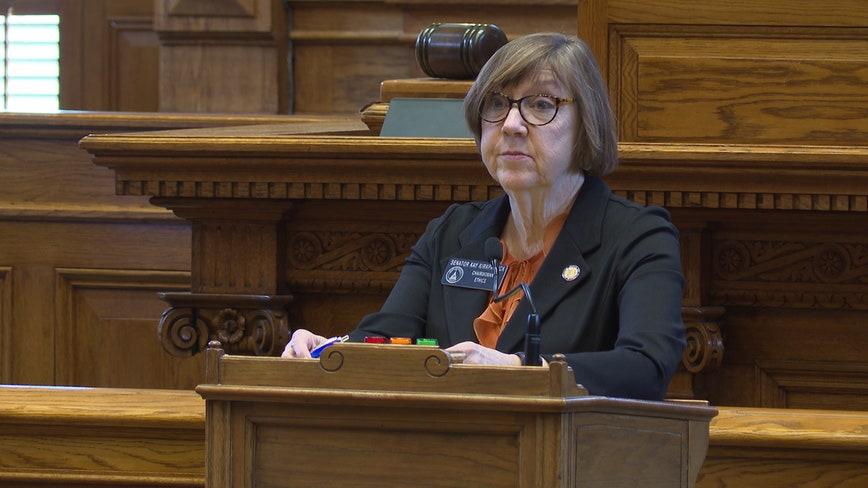 Georgia state senator recovers from coronavirus: 'I'm really lucky'
