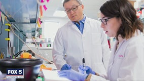 University of Georgia working on COVID-19 virus, hopes to be ready by the end of the year