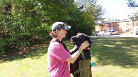 Foster families need for service dogs