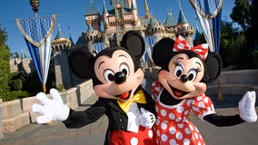 Disney suspends pay for 100,000 employees: report