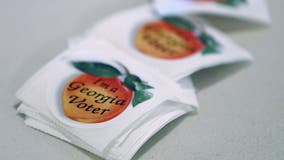 Ads, sometimes nasty, play key role in Georgia Senate race