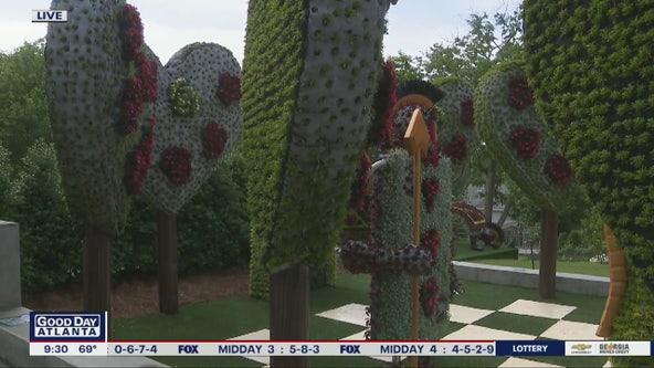 Atlanta Botanical Garden becomes Wonderland