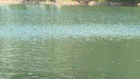 No ID on body found in Lake Lanier, deputies say