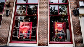 Amsterdam's red-light district awakens from lockdown