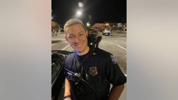 Officer adopts kitten reportedly thrown from vehicle in Sandy Springs