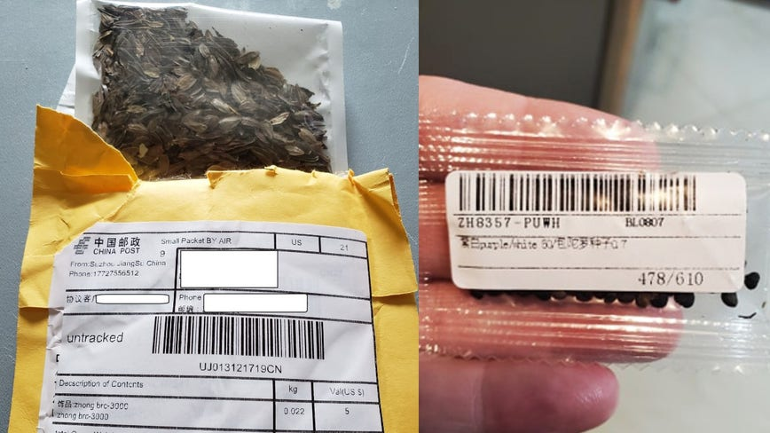 Officials warn Georgians about mysterious seeds possibly mailed from China
