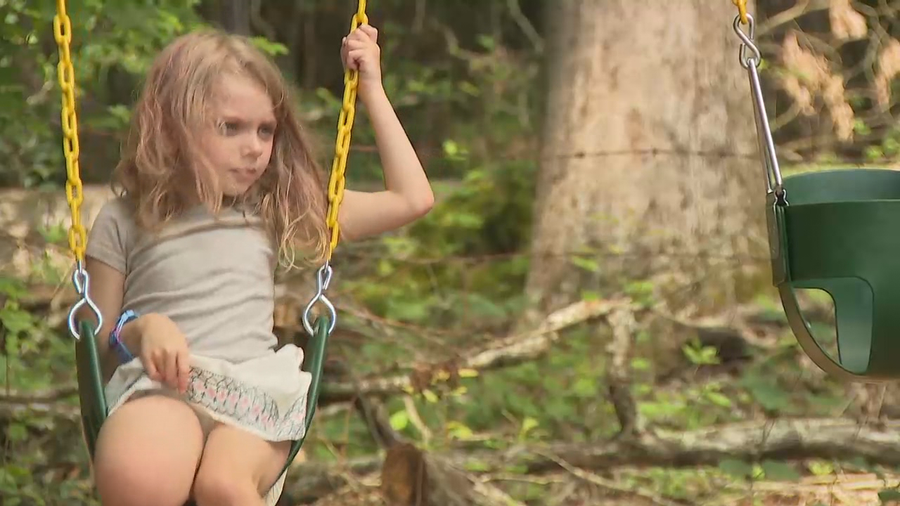 Georgia girl with rare genetic disorder surprised with donated playground
