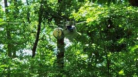 Slow-moving SlothBot calls Atlanta Botanical Garden home