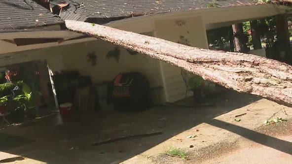 Storms downs trees, damages home in Roswell