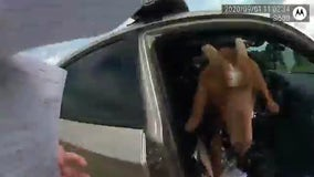 Goat jumps inside Douglas County Sheriff's deputy vehicle, eats paperwork