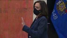 'Kamala' becomes a rally call against GOP senator in Georgia