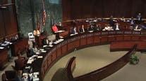 Atlanta City Council seek citizens arrest law ban