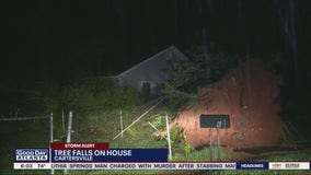 Tree falls on Cartersville home