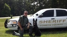 Georgia deputies mourn death of retired K-9 Officer Ruger