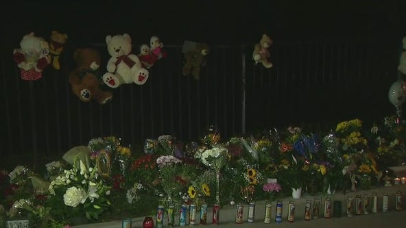 Brothers killed in Westlake Village crash; co-founder of prominent burn center arrested