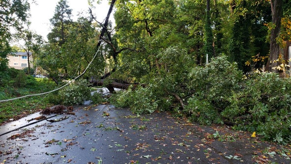 Nearly 620,000 without power across Georgia in Zeta's wake
