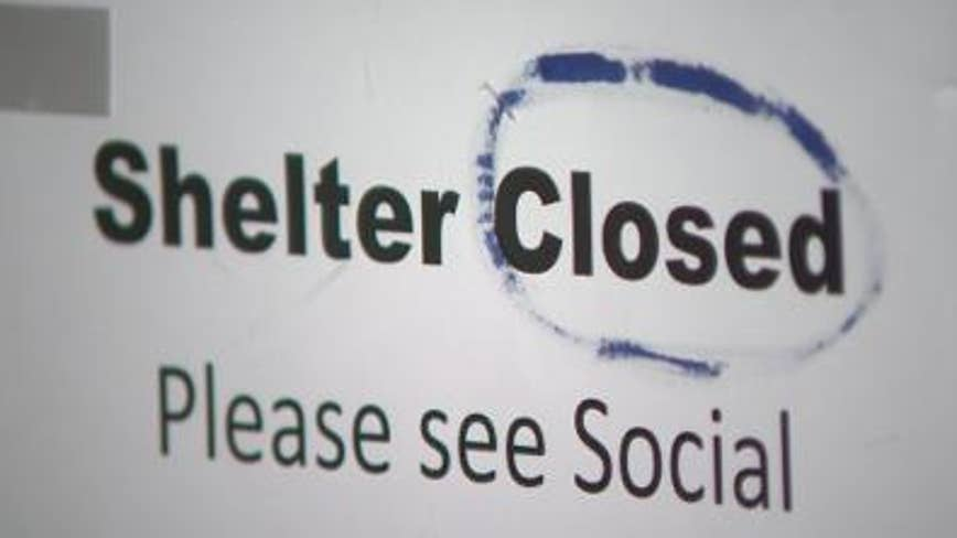 Cobb County Animal Shelter closed to public after illness sickens and kills animals