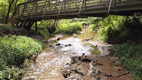 Hikes for Health challenge aims to unearth local hidden gems