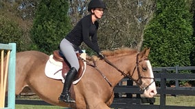 Rescue horse evades death and transforms into national competitor