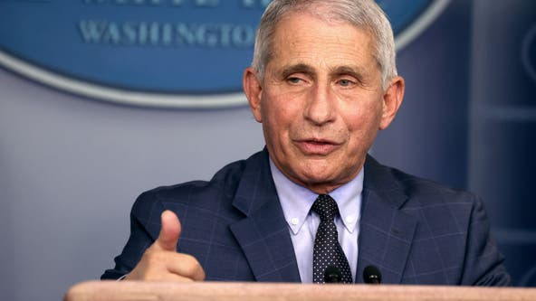 U.S. could soon see 'surge upon a surge' in COVID cases, says Fauci