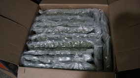 Almost 500 pounds of pot found at Detroit border crossing