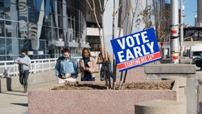As early voting wraps up, Georgians head to ballot box on last day of 2020