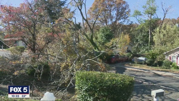 Grandmother rescued by neighbor after tree splits Atlanta home