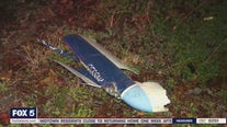 Latest in Hall County plane crash