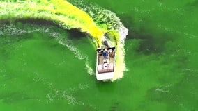 Tampa cancels annual St. Patrick's Day tradition of dyeing the river green