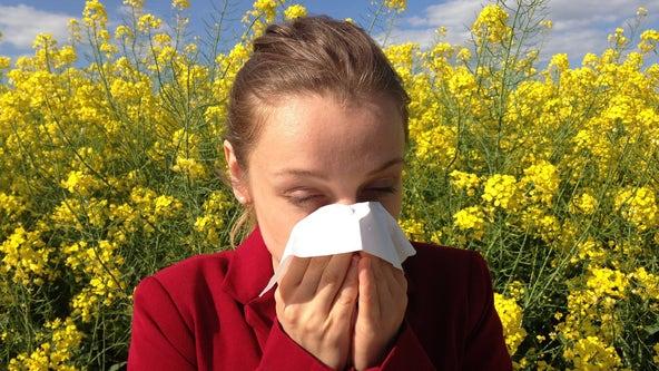 Atlanta pollen count highest for year so far
