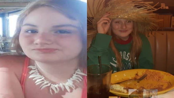 Police in Henry County search for missing girls