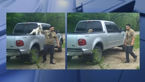 Dallas police working to identify man who assaulted puppies, causing their deaths