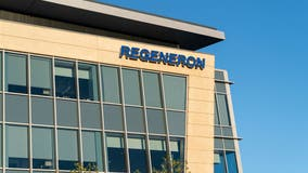 Regeneron's COVID-19 antibody drug prevents symptomatic infection by 81%, study finds