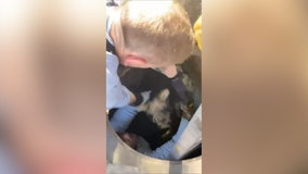 First responders work together to rescue puppy trapped in storm drain