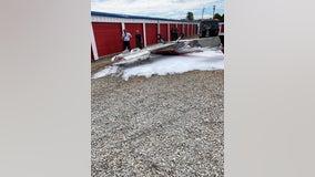 One injured in Barrow County single-engine plane crash, authorities say